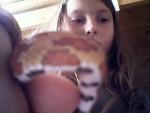serpent - (3 mesi)